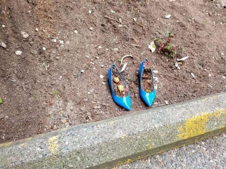 mildly interesting - Footwear