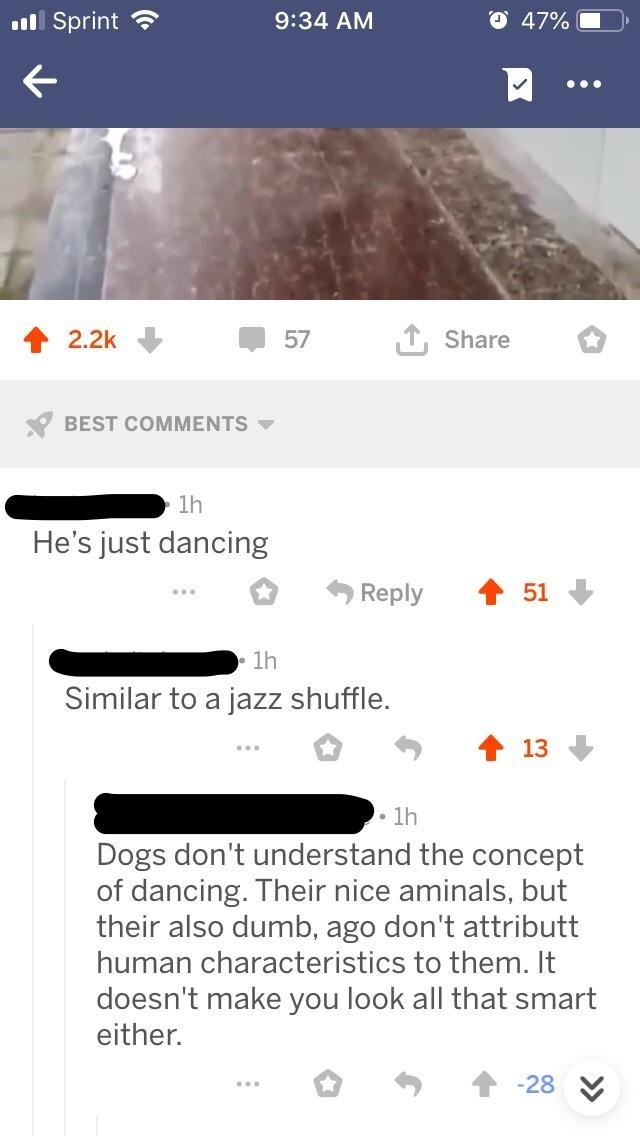 intellectuals - Text - l Sprint 47% 9:34 AM TShare 2.2k 57 BEST COMMENTS 1h He's just dancing 51 Reply 1h Similar to a jazz shuffle. 13 1h Dogs don't understand the concept of dancing. Their nice aminals, but their also dumb, ago don't attributt human characteristics to them. It doesn't make you look all that smart either. -28