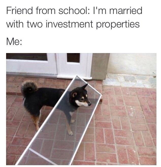 memes - Mammal - Friend from school: I'm married with two investment properties Me:
