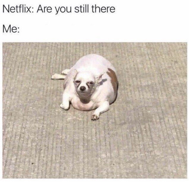 """Funny meme that says """"Netflix: Are you still there; Me: ..."""""""