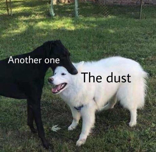 memes - Mammal - Another one The dust