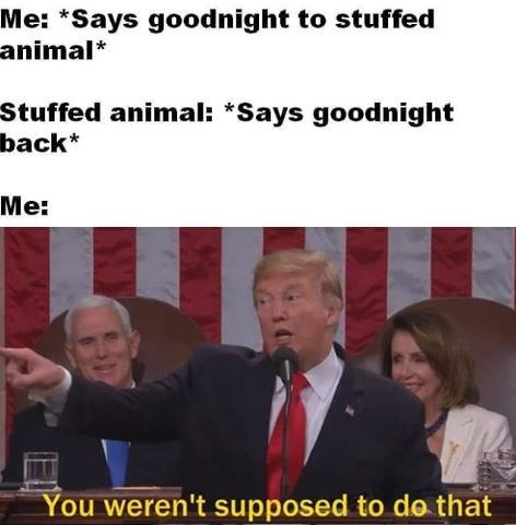 memes - Photo caption - Me: *Says goodnight to stuffed animal* Stuffed animal: *Says goodnight back* Me: You weren't supposed to do that