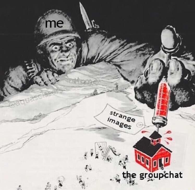 memes - Poster - me strange images eaquascis the groupchat