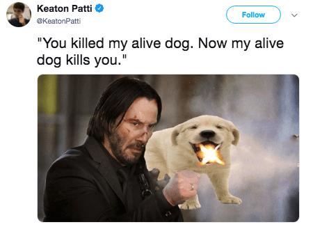 "john wick both - Dog breed - Keaton Patti Follow @KeatonPatti ""You killed my alive dog. Now my alive dog kills you."""