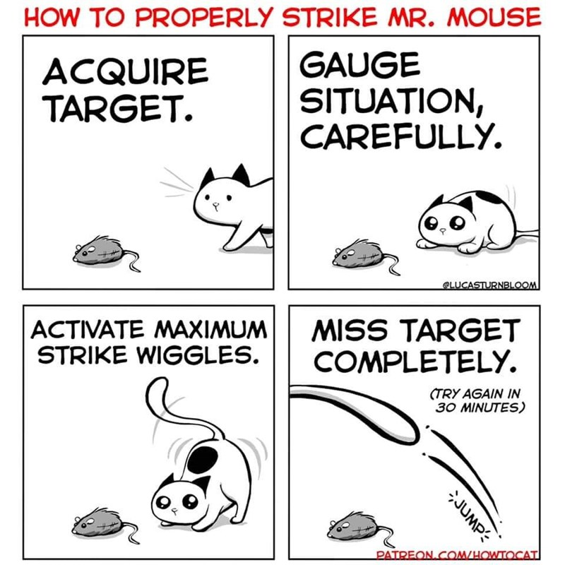 Text - HOW TO PROPERLY STRIKE MR. MOUSE GAUGE SITUATION, CAREFULLY. ACQUIRE TARGET LUCASTURNBLOOM |ACTIVATE MAXIMUM STRIKE WIGGLES. MISS TARGET COMPLETELY. (TRY AGAIN IN 30 MINUTES) PATREON COM/HOWTOCAT JUMP