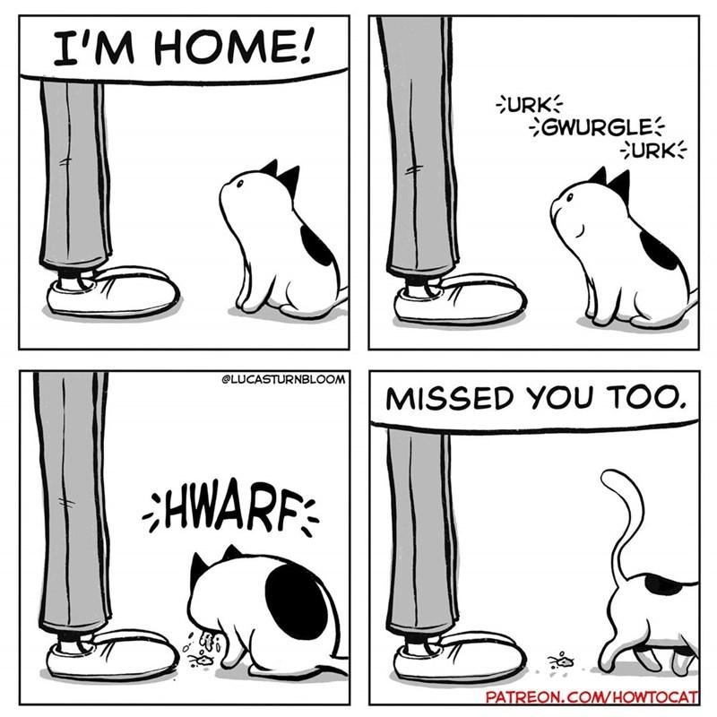 Leg - I'M HOME! URK GWURGLE URK @LUCASTURNBLOOM MISSED YOU TOO. HWARF PATREON.COM/HOWTOCAT