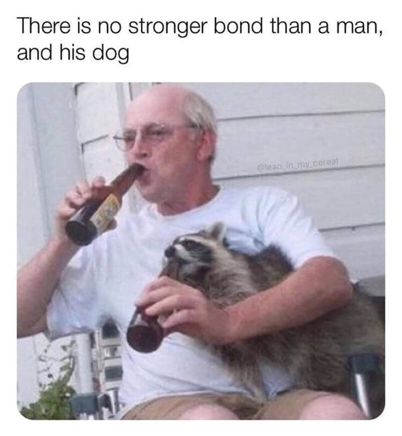 meme - Photo caption - There is no stronger bond than a man, and his dog lean in my.cerea