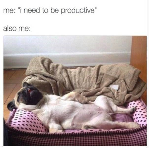 """funny meme - Product - me: """"i need to be productive also me:"""