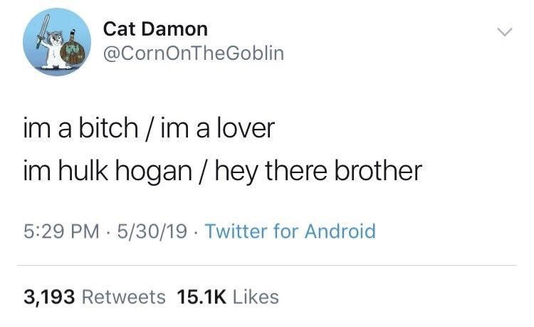 "Funny tweet that reads, ""I'm a bitch/I'm a lover; I'm Hulk Hogan/Hey there brother"""