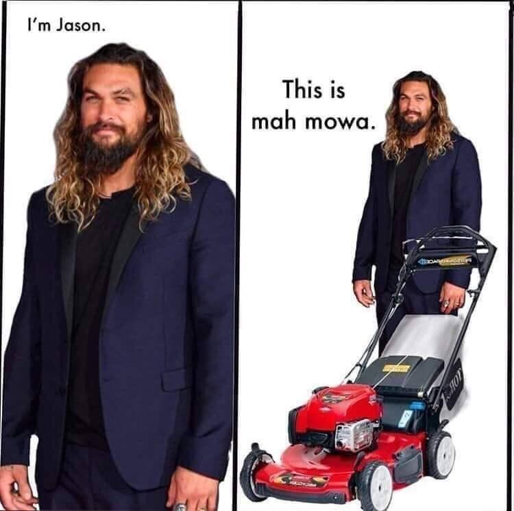 meme - Product - I'm Jason This is mah mowa