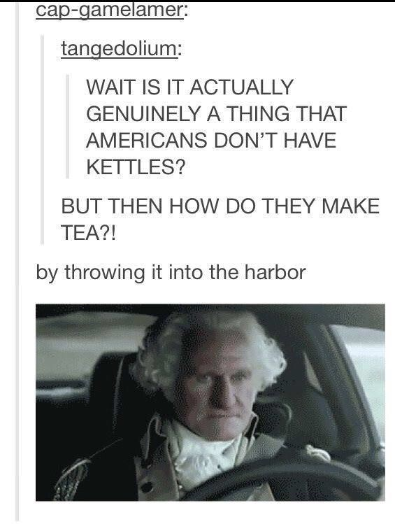 Text - cap-gamelamer: tangedolium: WAIT IS IT ACTUALLY GENUINELY A THING THAT AMERICANS DON'T HAVE KETTLES? BUT THEN HOW DO THEY MAKE TEA?! by throwing it into the harbor
