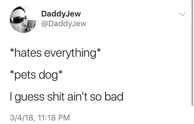 Text - DaddyJew @DaddyJew *hates everything* *pets dog* guess shit ain't so bad 3/4/18, 11:18 PM