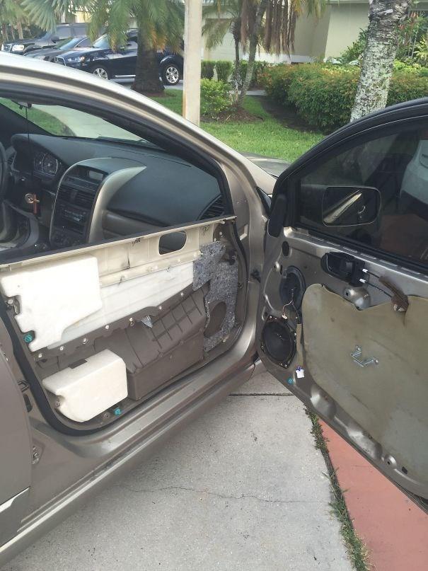 Funny photo of a car door