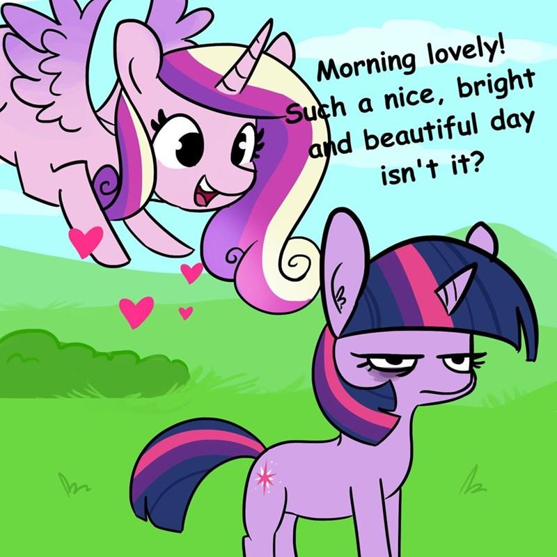 tj pones princess cadence twilight sparkle - 9319399680