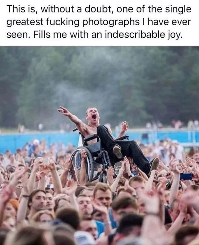 wholesome meme - People - This is, without a doubt, one of the single greatest fucking photographs I have ever seen. Fills me with an indescribable joy.