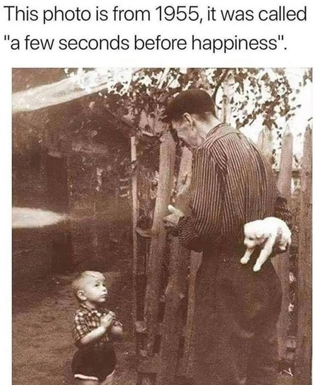 """wholesome meme - Photograph - This photo is from 1955, it was called """"a few seconds before happiness"""""""