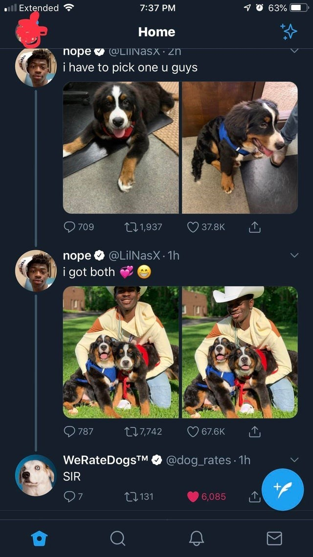 wholesome meme - Canidae - 7:37 PM 63% lExtended Home nope LIINASX zn i have to pick one u guyS ウ37.8K 1,937 709 nope @LilNasX 1h i got both 67.6K Li7,742 787 @dog_rates 1h WeRateDogsTM SIR 1131 6,085