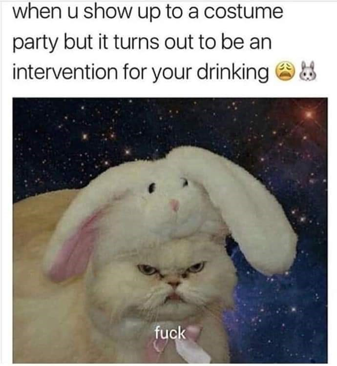 meme - Photo caption - when u show up to a costume party but it turns out to be an intervention for your drinking fuck