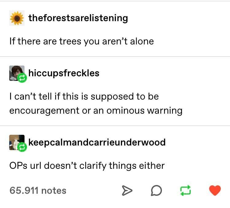 meme - Text - theforestsarelistening If there are trees you aren't alone hiccupsfreckles I can't tell if this is supposed to be encouragement or an ominous warning keepcalmandcarrieunderwood OPs url doesn't clarify things either 65.911 notes