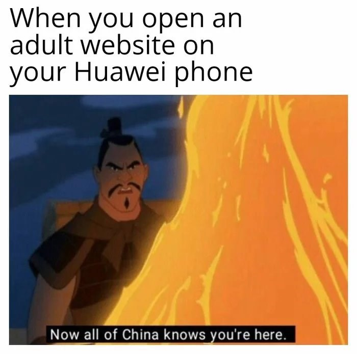 meme - Text - When you open an adult website on your Huawei phone Now all of China knows you're here.