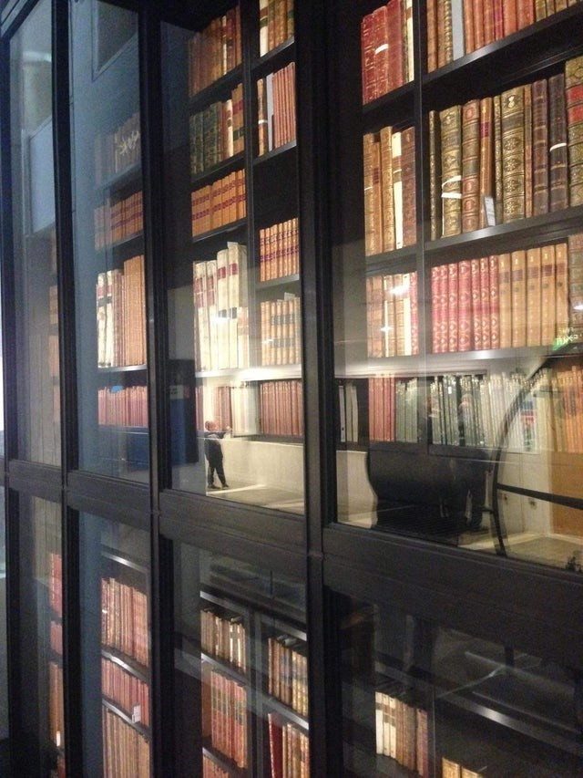 optical illusion tiny person in a library of huge books