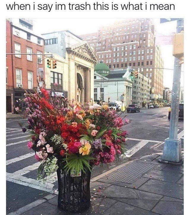 Memes and tweets - Flower - when i say im trash this is what i mean TRS