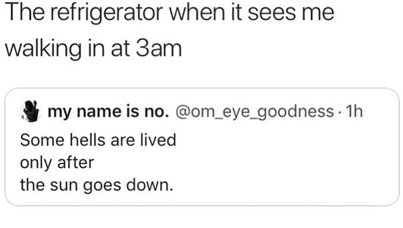 Memes and tweets - Text - The refrigerator when it sees me walking in at 3am my name is no. @om_eye_goodness 1h Some hells are lived only after the sun goes down.