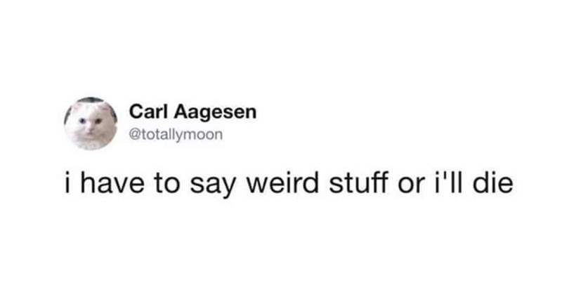 Memes and tweets - Text - Carl Aagesen @totallymoon i have to say weird stuff or i'll die