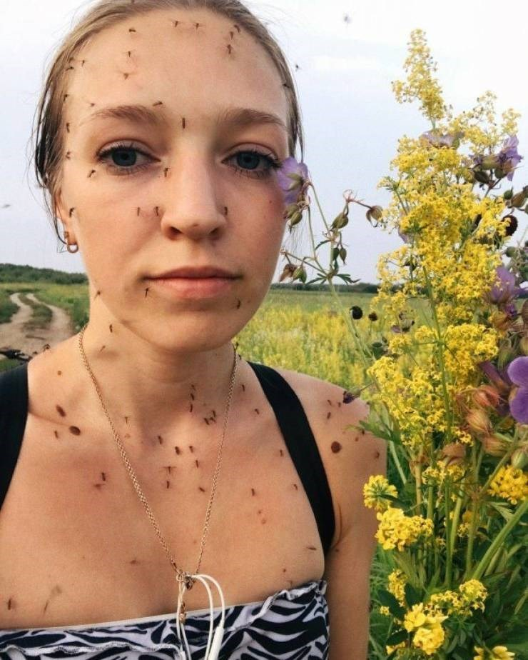 unlucky woman with bugs all over her face
