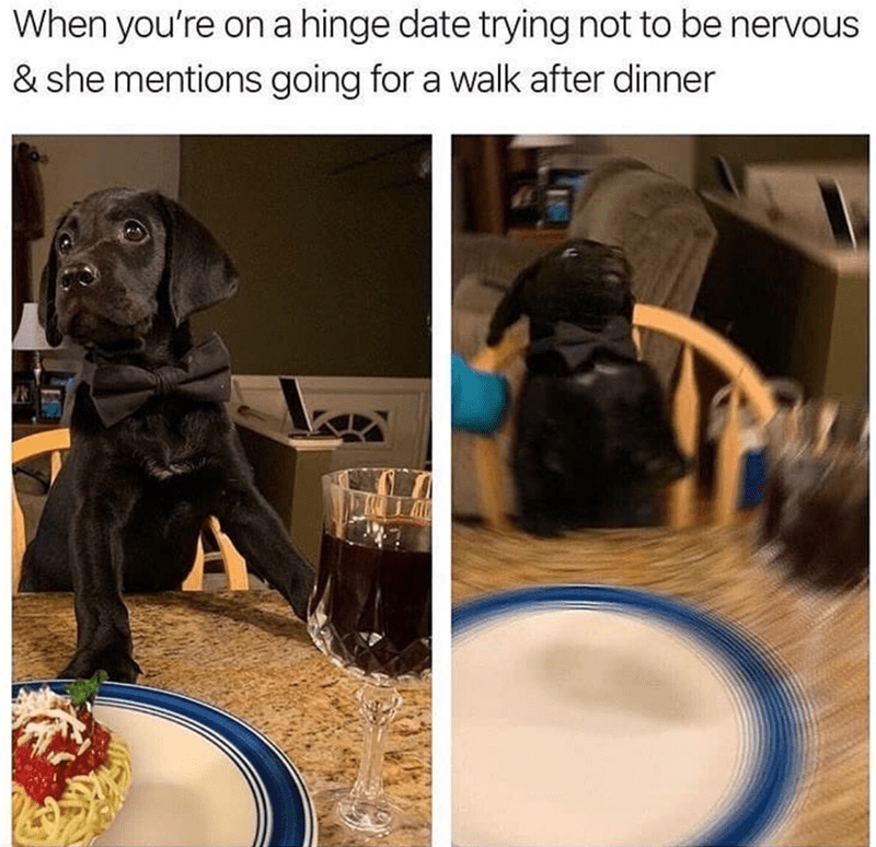 Dog - Dog - When you're on a hinge date trying not to be nervous & she mentions going for a walk after dinner A