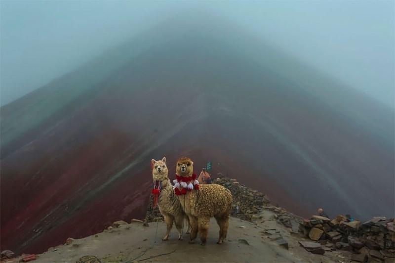 national geographic animal photos - Atmospheric phenomenon