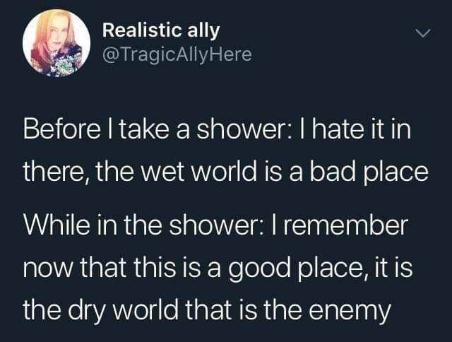 Funny tweet about showering, the wet world is a bad place. Once in the shower, the true enemy is the dry world.