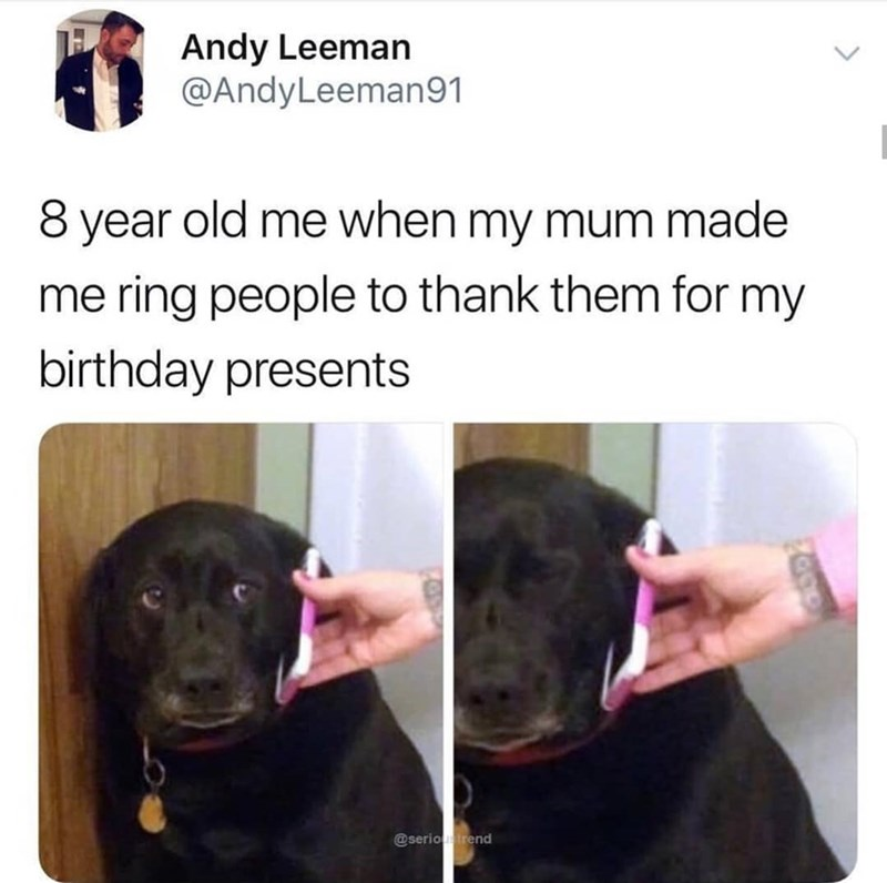 happy birthday meme - Dog breed - Andy Leeman @AndyLeeman91 8 year old me when my mum made me ring people to thank them for my birthday presents @serio trend