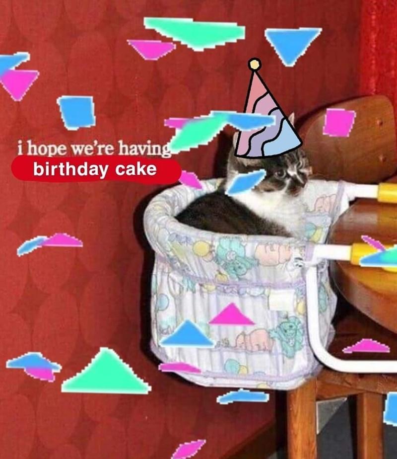 happy birthday meme - Illustration - i hope we're having birthday cake