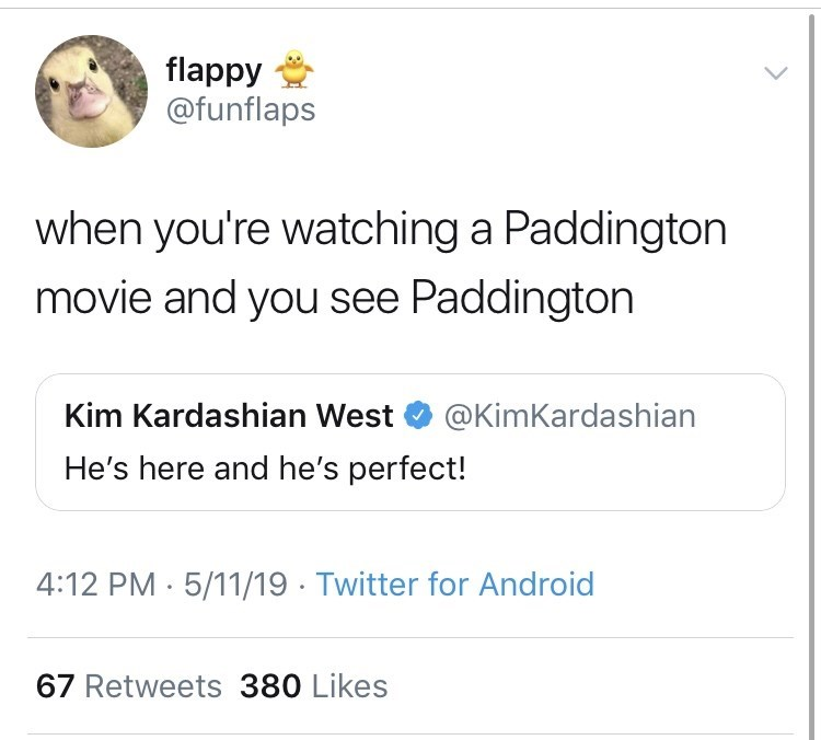 Text - flappy @funflaps when you're watching a Paddington movie and you see Paddington Kim Kardashian West @KimKardashian He's here and he's perfect! 4:12 PM 5/11/19 Twitter for Android 67 Retweets 380 Likes