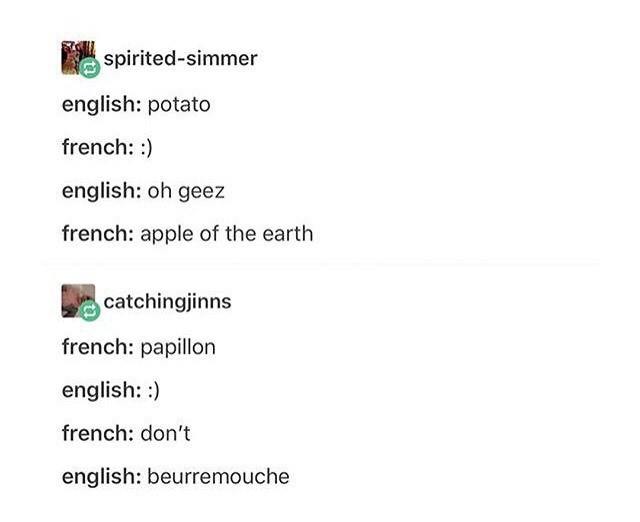 Meme - Text - spirited-simmer english: potato french: ) english: oh geez french: apple of the earth catchingjinns french: papillon english: french: don't english: beurremouche