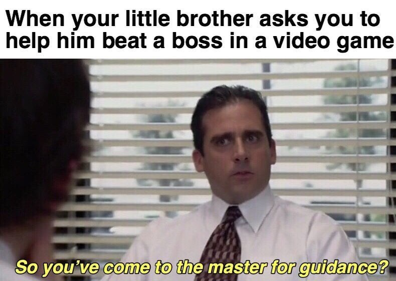 Meme - Text - When your little brother asks you to help him beat a boss in a video game So you've come to the master for guidance?