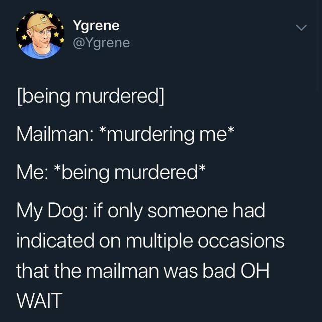 "Meme - Text - Ygrene @Ygrene [being murdered] Mailman: *murdering me* Me: ""being murdered* My Dog: if only someone had indicated on multiple occasions that the mailman was bad OH WAIT"