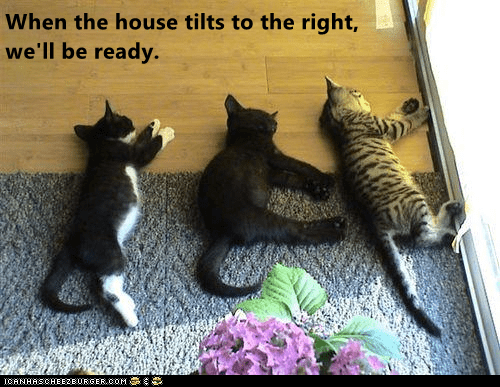 Cat - When the house tilts to the right, we'll be ready. ICANHASCHEEZBURGER.OOM