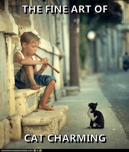 Photo caption - THE FINE ART OF CAT CHARMING ICANHASCHEEZE0RGER coM