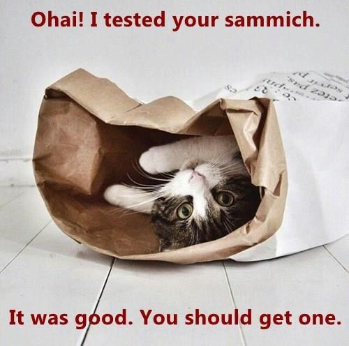 Font - Ohai! I tested your sammich. etez pas It was good. You should get one.