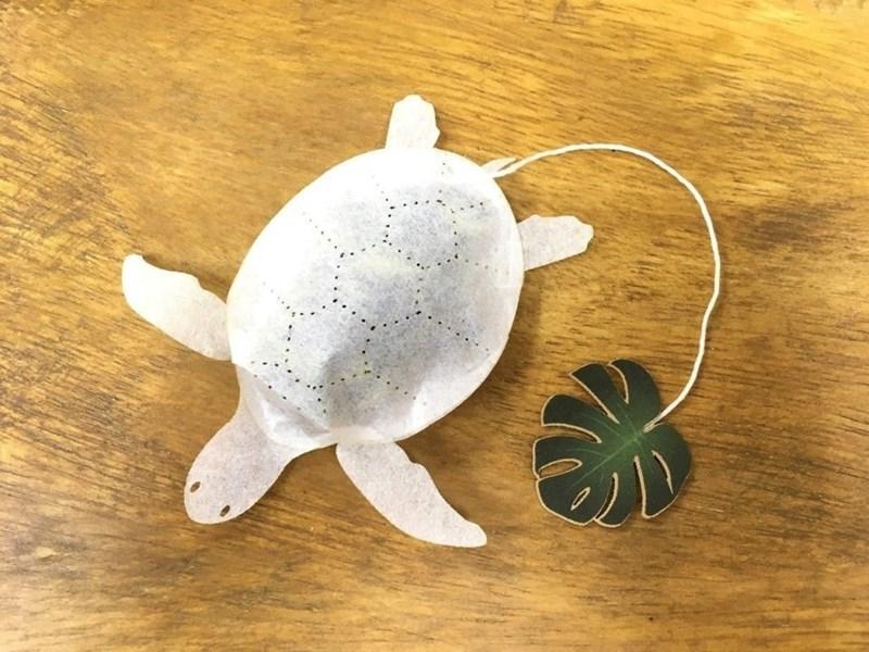 animal tea - Turtle