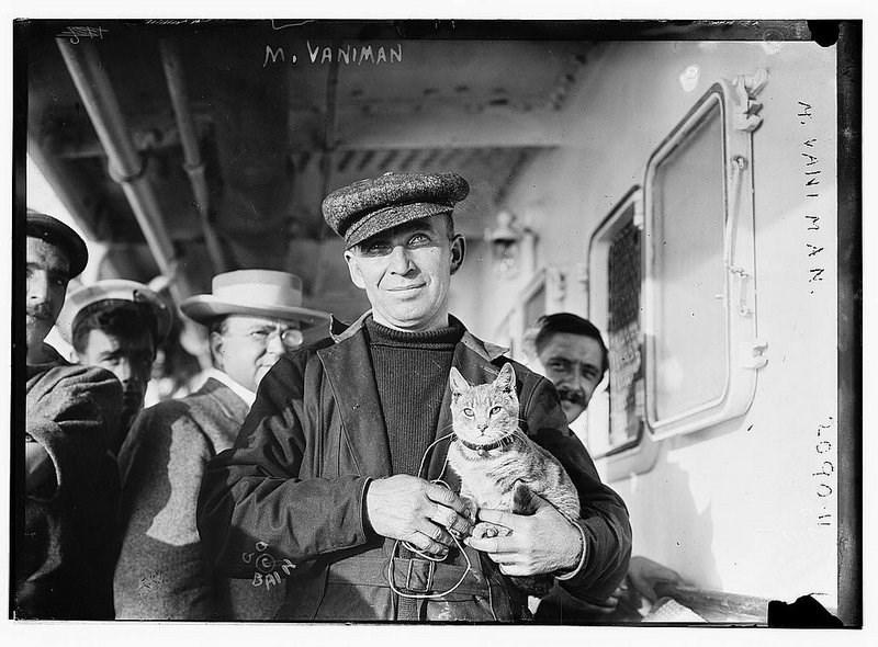 cat book - Photograph - M. VANIMAN BAI N. VANI M A N