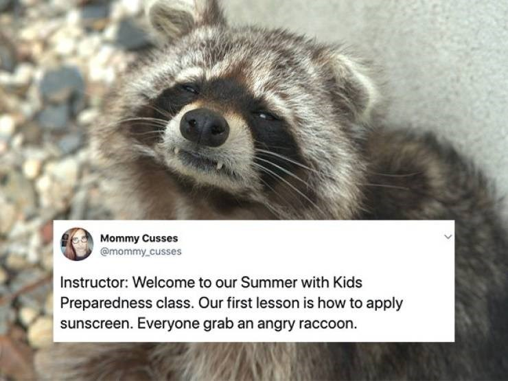Mammal - Mommy Cusses @mommy cusses Instructor: Welcome to our Summer with Kids Preparedness class. Our first lesson is how to apply sunscreen. Everyone grab an angry raccoon.
