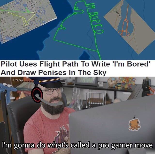 Memes - Aerospace engineering - ah Oander ise ne e Pilot Uses Flight Path To Write 'I'm Bored' And Draw Penises In The Sky Frozony THINK I'm gonna do what's called a pro gamer move Salton City BORED