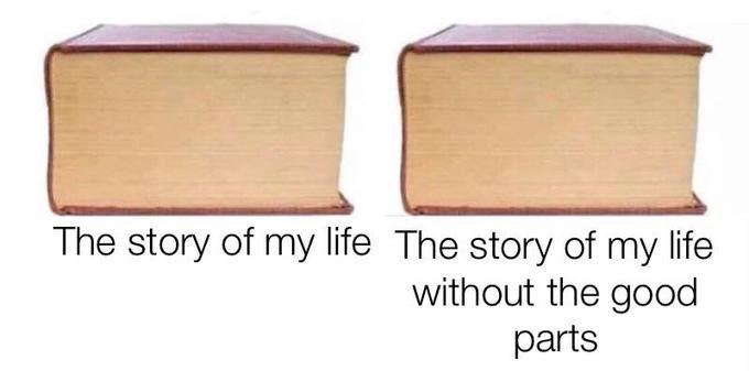 2019 meme - Wood - The story of my life The story of my life without the good parts
