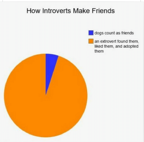 Meme - Text - How Introverts Make Friends dogs count as friends an extrovert found them liked them, and adopted them