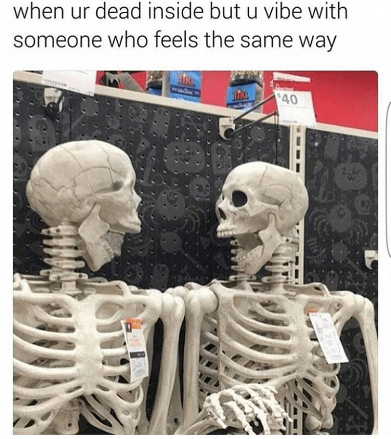 Meme - Skeleton - when ur dead inside but u vibe with someone who feels the same way $40