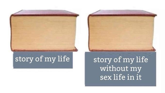 Meme - Product - story of my life story of my life without my sex life in it