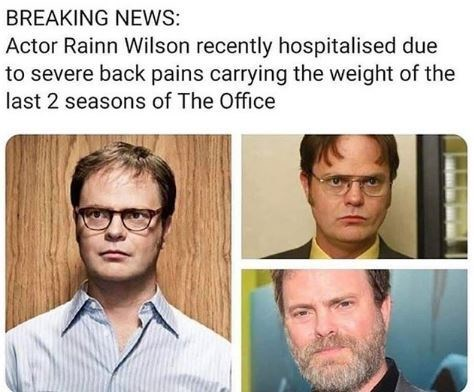 Meme - Hair - BREAKING NEs: Actor Rainn Wilson recently hospitalised due to severe back pains carrying the weight of the last 2 seasons of The Office